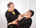 Thumbs Img 6515 in Wing Tsun Fotogalerie
