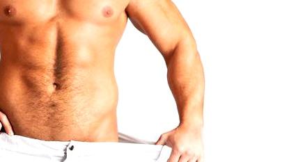 Muskelaufbau Fettabbau in Muskelaufbau